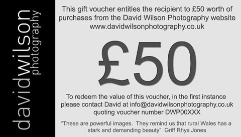 David Wilson Gift Card