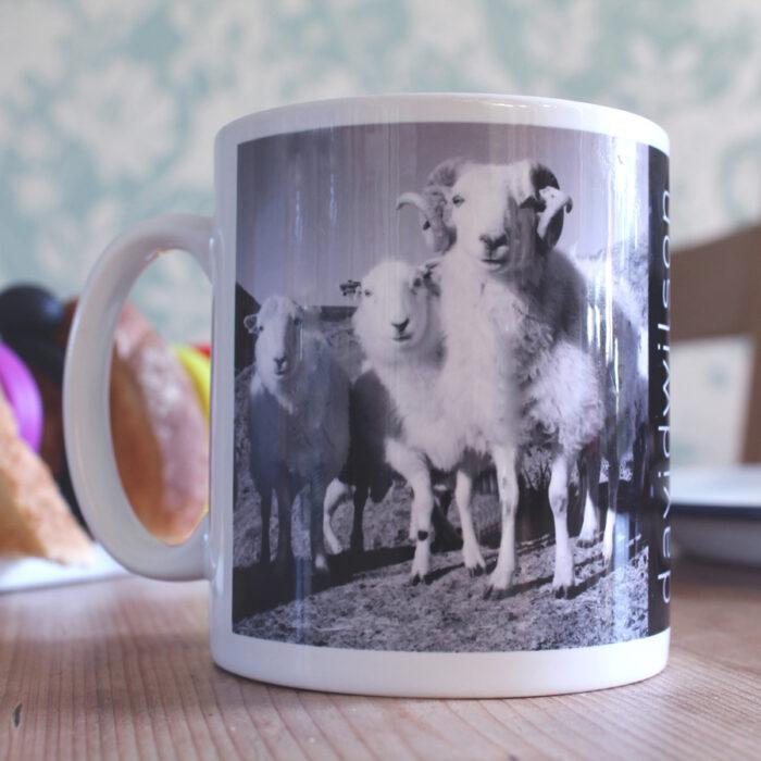 Lambs on a mug